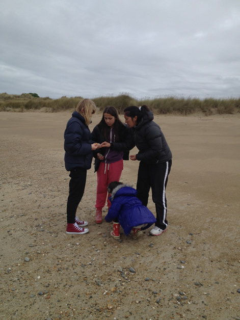 Comparing finds on the beach.