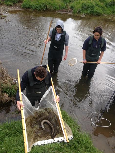 Craig Pauling, Hayden Thompson (Nō Wairewa) and Nature Edwards electric fishing.