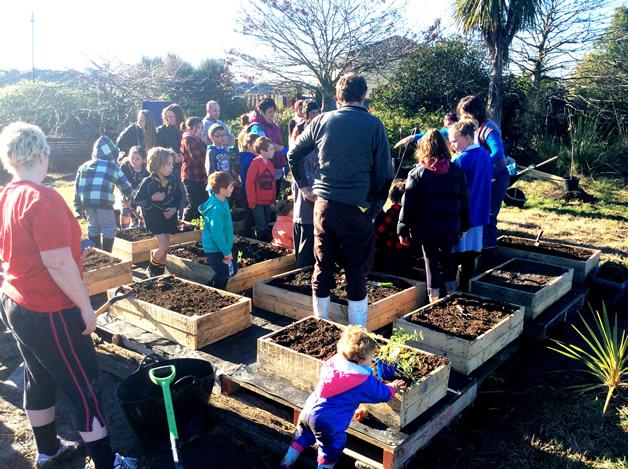 Freeville School pupils planting out raised vegetable garden beds.