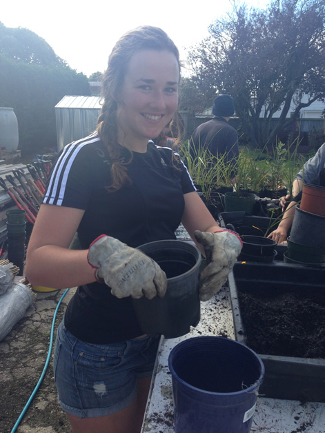 Heather Andrew joins the group in potting up plants at the rūnaka grounds.