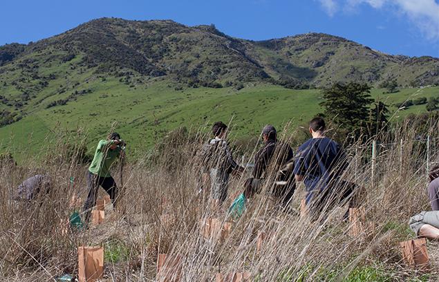 Kakanui Reserve is now a reality.