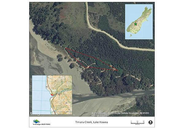 Lake Hawea – Timaru River (Timaru Creek).