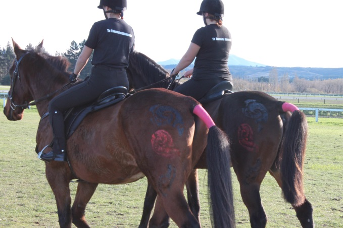 Maori design on horses for show, with the girls    wearing Taumutu t-shirts.