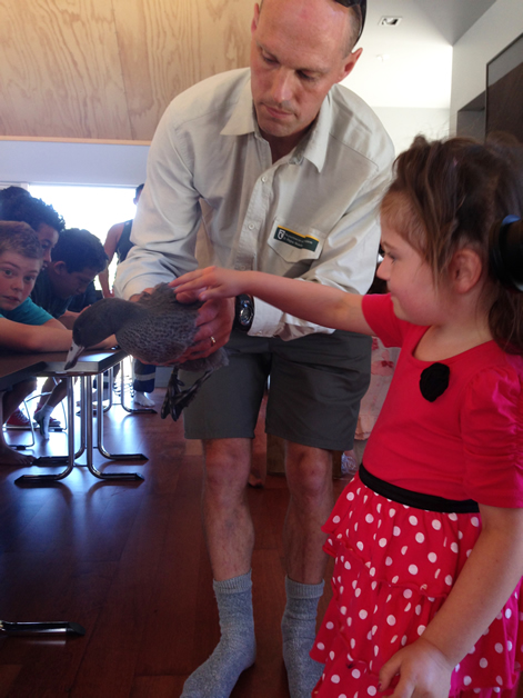 One of the DOC representatives shows a whio to tamariki.