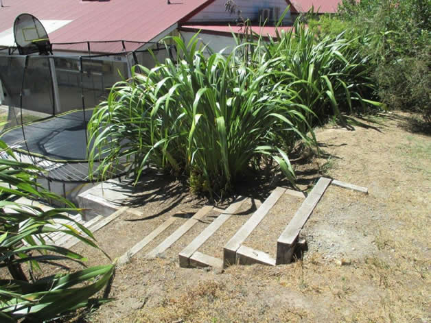 Steps that were cleared at the back of the marae.