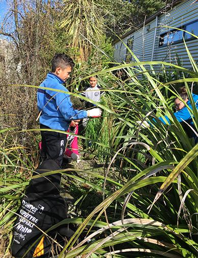 Taiki Pou, Te Kaio & Metua Cranwell helping Ngāi Tahu staff prune.