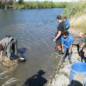 Tamariki were happy to lend a hand down on the water.