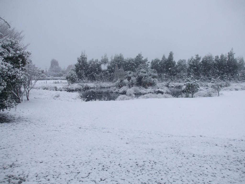 The Hokonui Marae pond covered in snow.