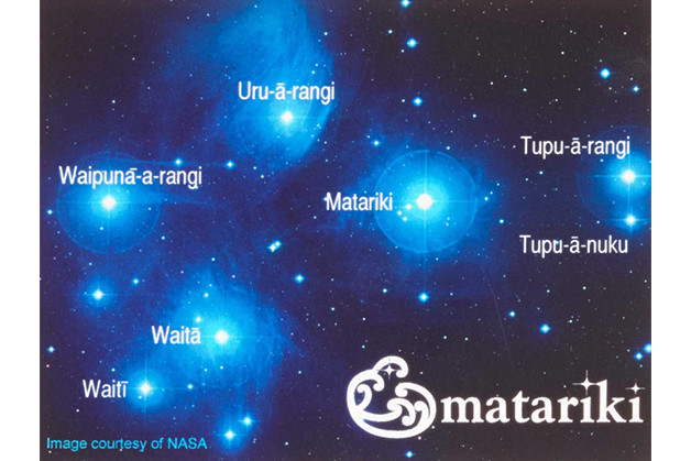 The stars of Matariki.