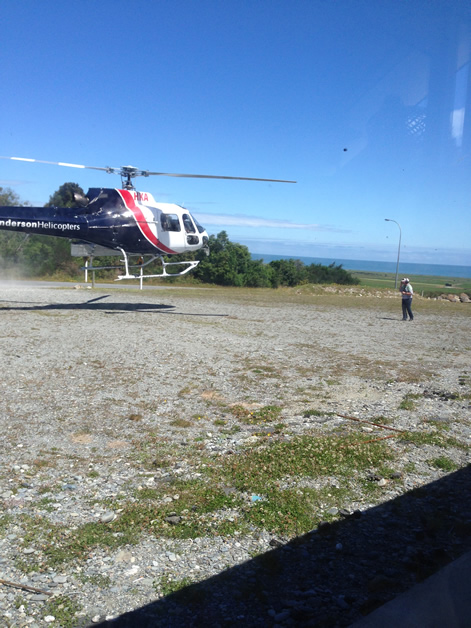 The whio arriving by helicopter.