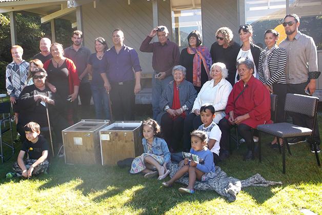 kiwi Featured Image