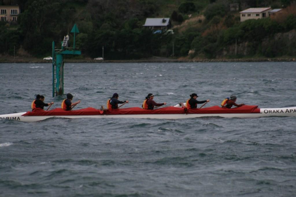 The waka ama crew paddling hard.